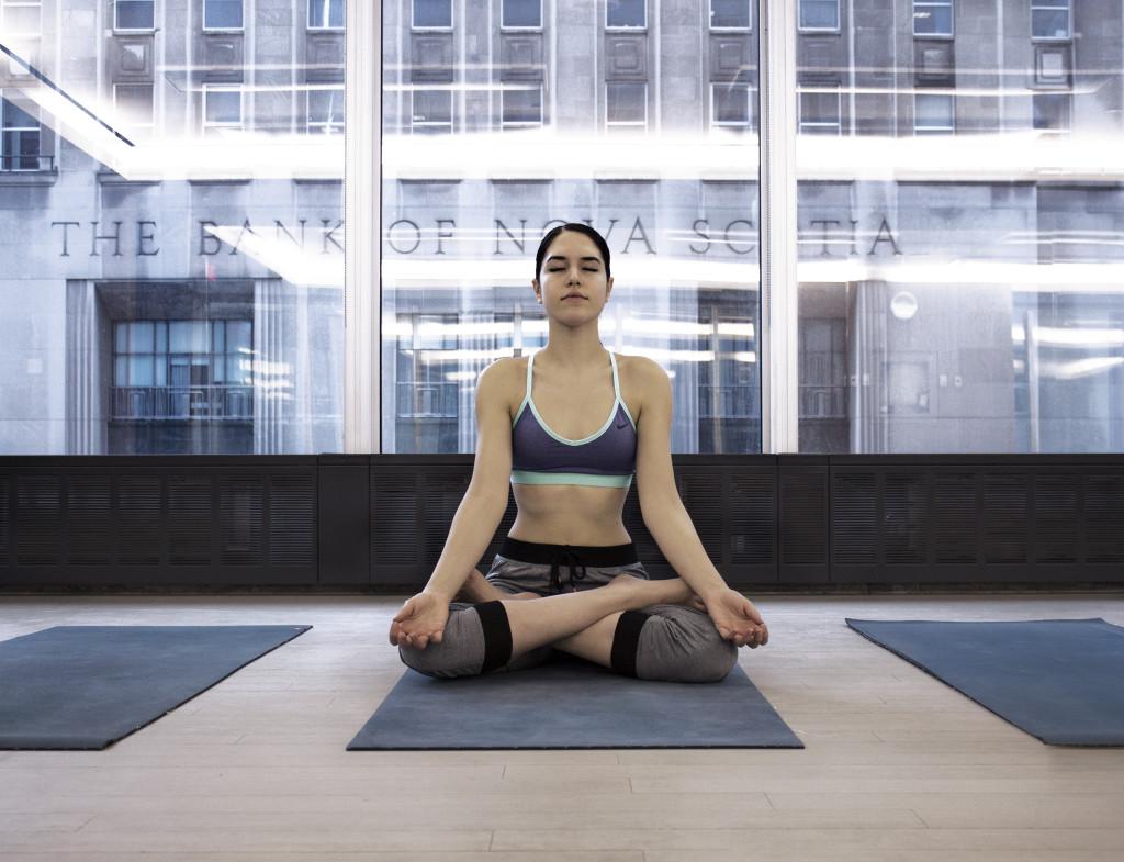 equinox-yoga-vanessa-cesario-lotus